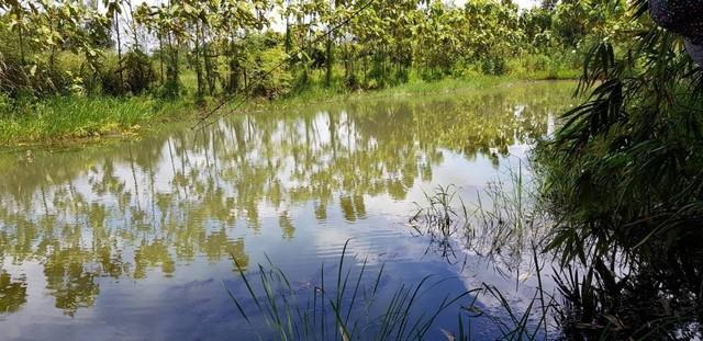 ขายที่ดินติดคลอง 28ไร่ 2งาน93ตรว มีบ่อปลา โรงเก็บของ บ้านพัก ต้นยาง นาใหญ่ จ.ปราจีนบุรี