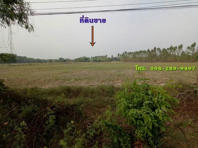 ขายที่ดิน 92 ไร่  ไร่ละ1.2 ล้านบาท  ติดถนน พื้นที่สีม่วง  จ. ปราจีนบุรี