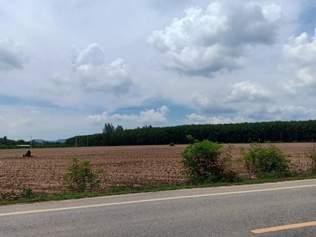 ขายที่ดินสวยผังสีม่วง 33 ไร่ เหมาะทำโรงงาน ติดเส้นหนองครก 3015 แปลงยาว ฉะเชิงเทรา