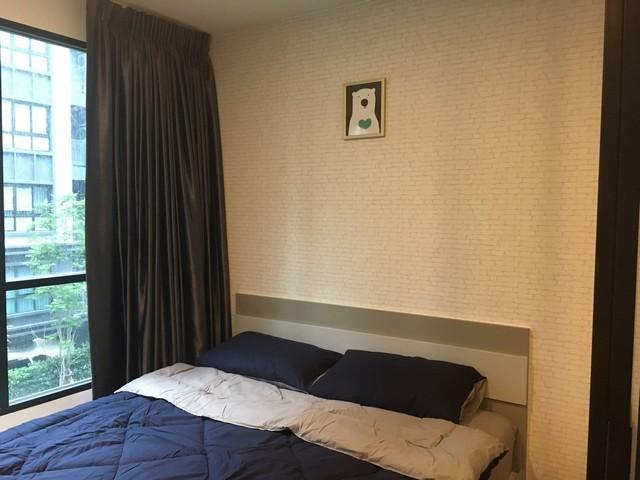ให้เช่า 1ห้องนอน ขนาด 25 ตารางเมตร วิวสระ ตึกD ชั้น3ที่ Kensington ศรีราชา-แหลมฉบัง วิวสระ