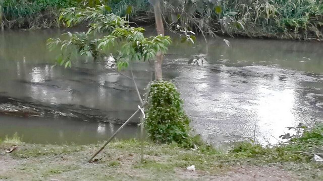 ขายที่ดิน ทำเลสวยติดแม่น้ำลำตะคอง อ.ปากช่อง เหมาะแก่การซื้อลงทุน หรือสร้างรีสอร์ท