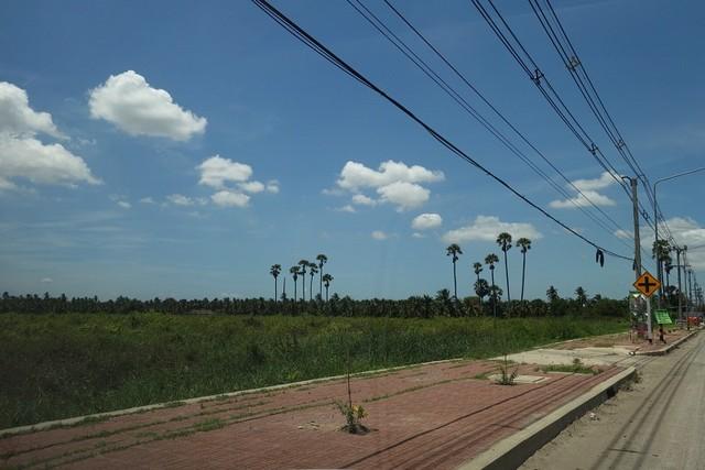 ขายที่ดินริมถนนศาลายา-นครชัยศรีใกล้เซ็นทรัลศาลายา ผังเมืองสีชมพู