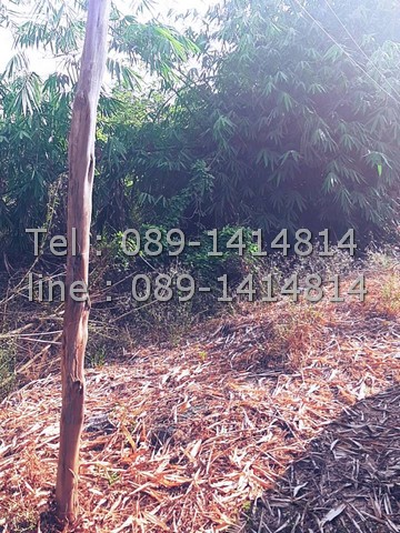 ขายที่ดิน 1 ไร่ 4 ล้านบาท ตำบลบ้านฉาง อำเภอเมืองปทุมธานี