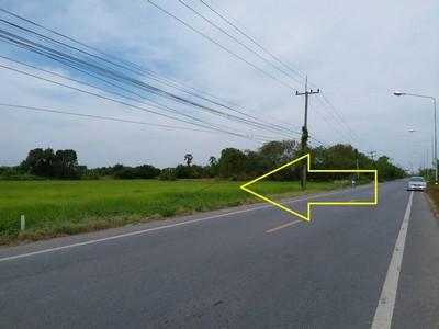 ขายที่ดินติดถนนลาดยาง คลอง10 ธัญบุรี-ลำลูกกา เนื้อที่ 2 ไร่  มีไฟฟ้า ประปา ครบ เป็นที่นาสวย