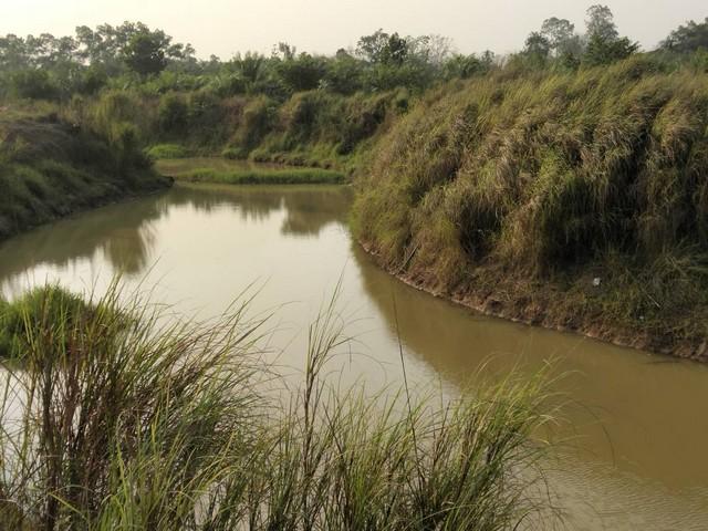 ขายที่ดินปราจีนถูก 2 ไร่ ไร่ละ 350,000 ห่างเส้นสุวรรณศร 2 กม. ติดคลอง