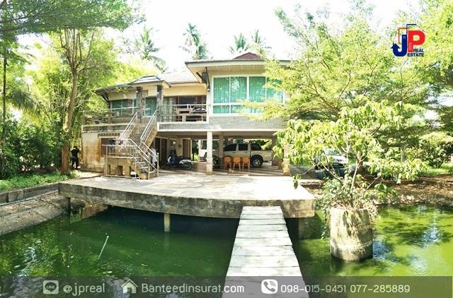 ขาย บ้านพร้อมสวน 2ไร่เศษ 3นอน 3น้ำ ซอยชนเกษม43 สุราษฎร์ธานี มีบ่อเลี้ยงปลา ติดคลอง ใกล้แมคโคร 8นาที