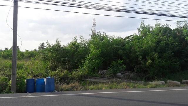 ขายที่ดินแปลงสวยมาก อ.สามพราน ติดถนนบรมราชชนนี  ขนาด 5 ไร่ 1 งาน 29 ตรว.