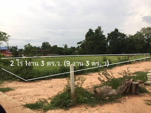 ขายที่ดินเปล่า ที่ดินสวย แปลงมุม ราคาถูก 2 ไร่ 1 งาน 3 ตร.วา อ.โนนไทย โคราช