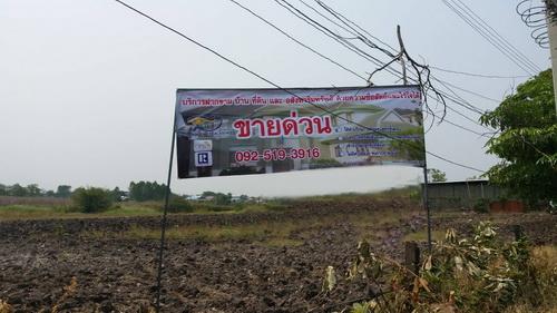 ขายที่ดิน 9 ไร่ ห่างจากถนนหลักเพียง 300 เมตร ซอย เทศบาล 13 ต.พุเตย อ.วิเชียร์บุรี จ.เพชรบูรณ์