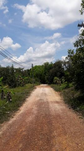 ที่ดินสวนผลไม้ 35 -3- 31 ไร่ ต.ทุ่งเบญจา อ.ท่าใหม่ จ.จันทบุรี