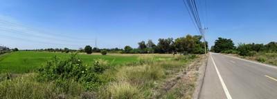 ขายที่ดิน คลอง 12 หนองเสือ 20 ไร่ ติดถนนลาดยาง  มีไฟฟ้า มีน้ำประปา ทำเลดี ขายใกล้กับราคาประเมิน