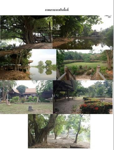 ขายที่ดินริมแม่น้ำ พร้อมเรือนไทย อายุเกือบ 100 ปี อ.บางไทร จ.อยุธยา