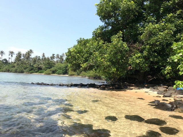 ขายที่ดินเปล่าติดทะเล 72-2-93 ไร่ เกาะหมาก   ตราด ติดทะเล  เหมาะสำหรับลงทุน รีสอร์ท บ้านพัก โรงแรม