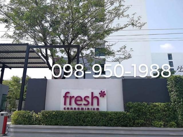 คอนโด เฟรช คอนโด (Fresh Condo) ใกล้สถานีรถไฟฟ้าเตาปูน-บางโพ