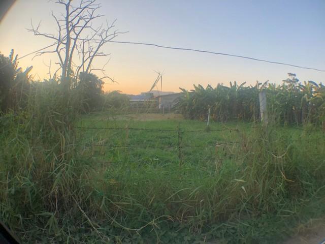 ขายที่ดิน 189 ตรว. ซอยข้างปั๊ม ชุมชนท่ามะนาว อ.ปากช่อง ถ.ลำสมพุง ใกล้วัดท่ามะนาว