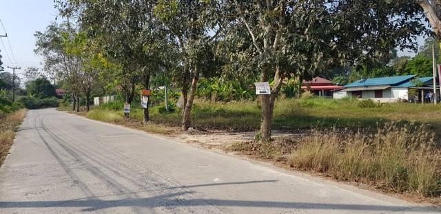 ขายที่ดินย่านชุมชน พื้นที่สีเขียว ต.อาษา อ.บ้านนา จ.นครนายก
