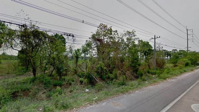 ขายที่ดิน ติดถนนมิตรภาพ ม่วงหวาน น้ำพอง ขอนแก่น 117 ไร่ ขายยกแปลง